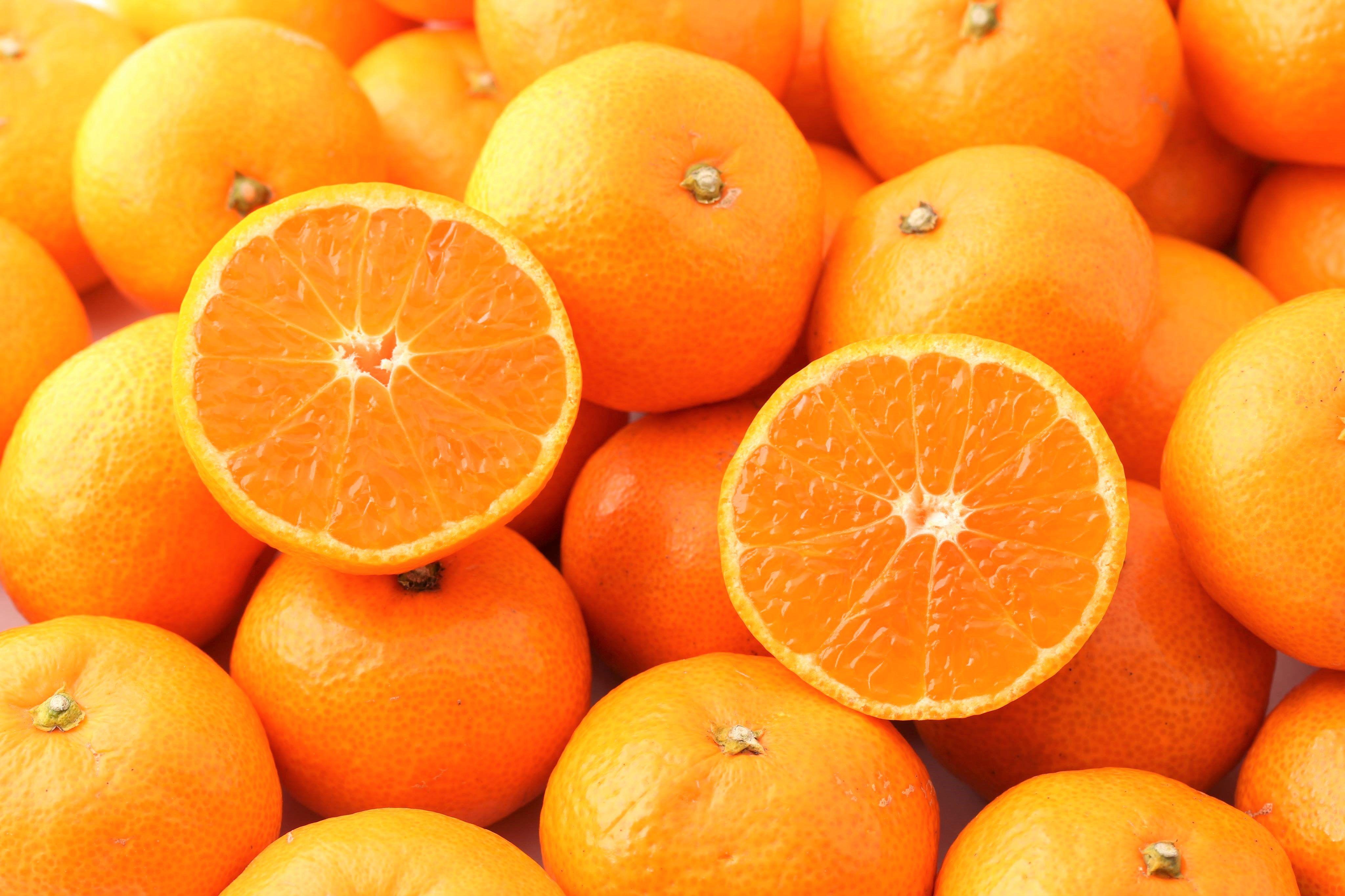 【年度テーマ】柑橘ゼリー「みかんのジャグチ」