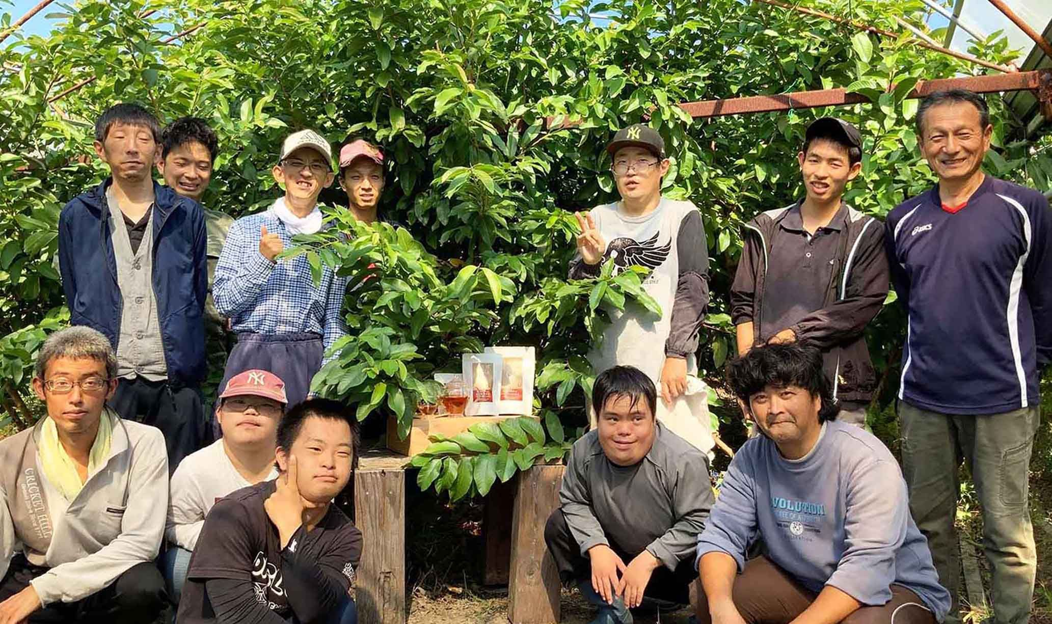 【年度テーマ】土佐國グァバ茶