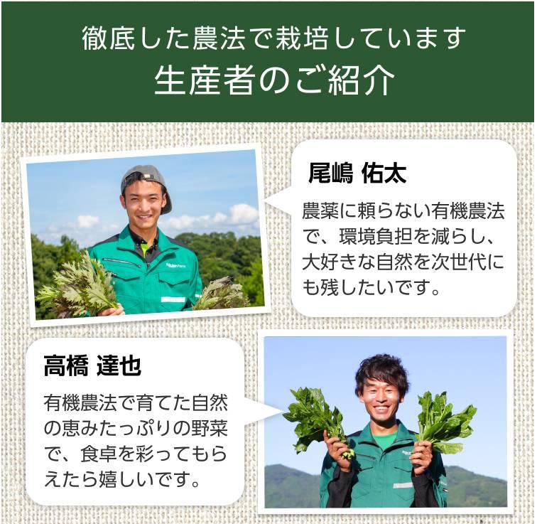 【自由テーマ】100%国産オーガニック 冷凍カリフラワーライス